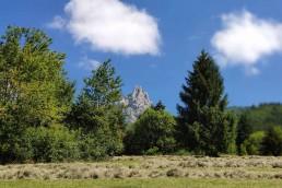 Balade montagne St Germain