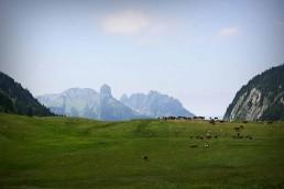 Balade montagne plateau des glieres